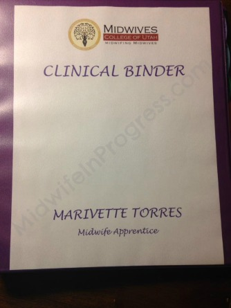 I created my clinical binder, which is a beauty!